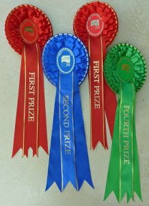 Fleece Show Results