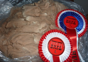 Hope Fleece Show Results