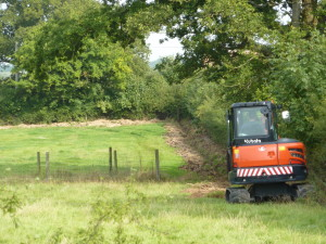 Badger proof fencing - how we did it